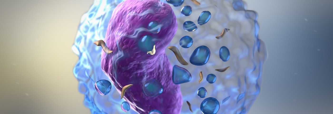 Starving Innate Lymphoid Cells in Lung May Prevent Allergic Inflammation