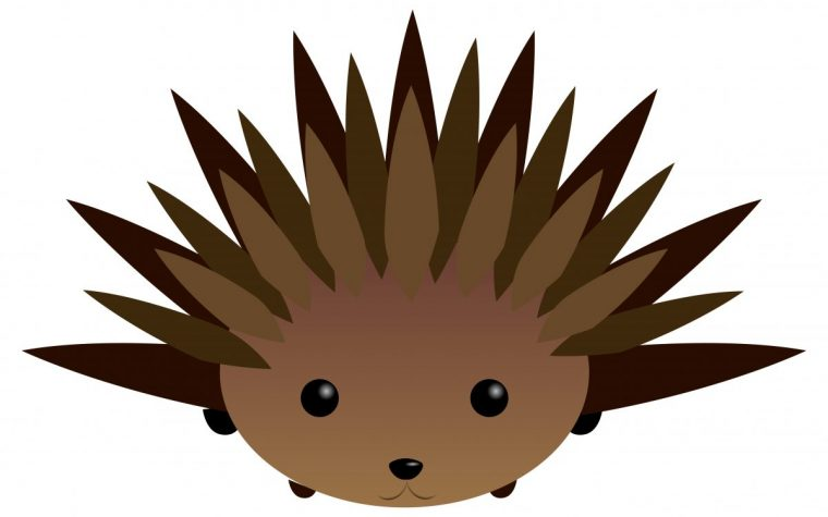 molecule called porcupine